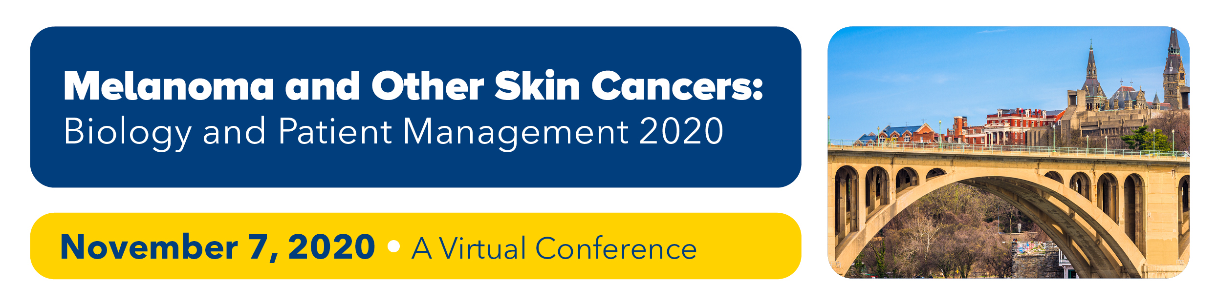 Melanoma and Other Skin Cancers: Biology and Patient Management 2020 Banner